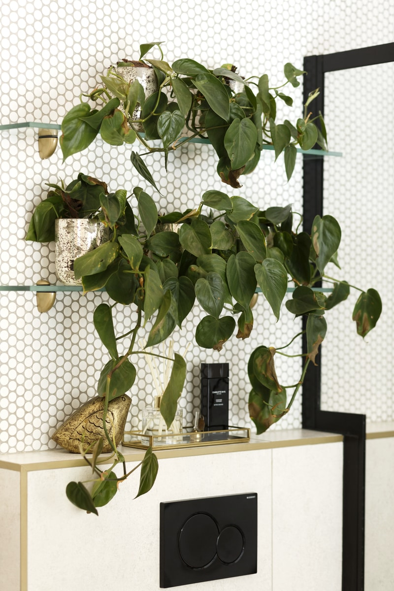 Plant wall modern bathroom matte black accessories